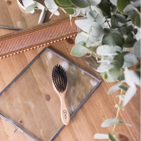Brosse à cheveux moyen modèle en bois de hêtre et soie de sanglier 1845