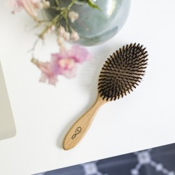 Brosse à cheveux grand modèle en bois de hêtre et soie de sanglier 1845